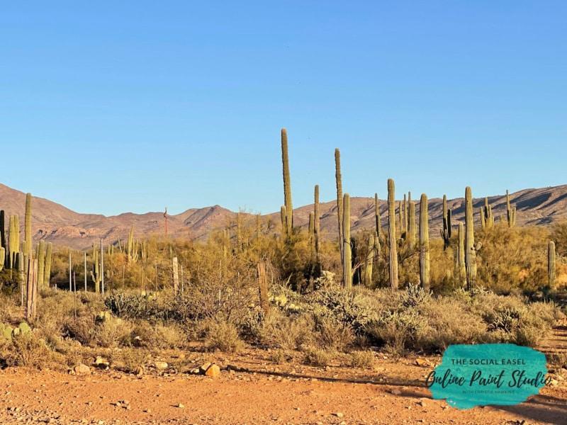 Cacti Mountains The Social Easel Online Paint Studio